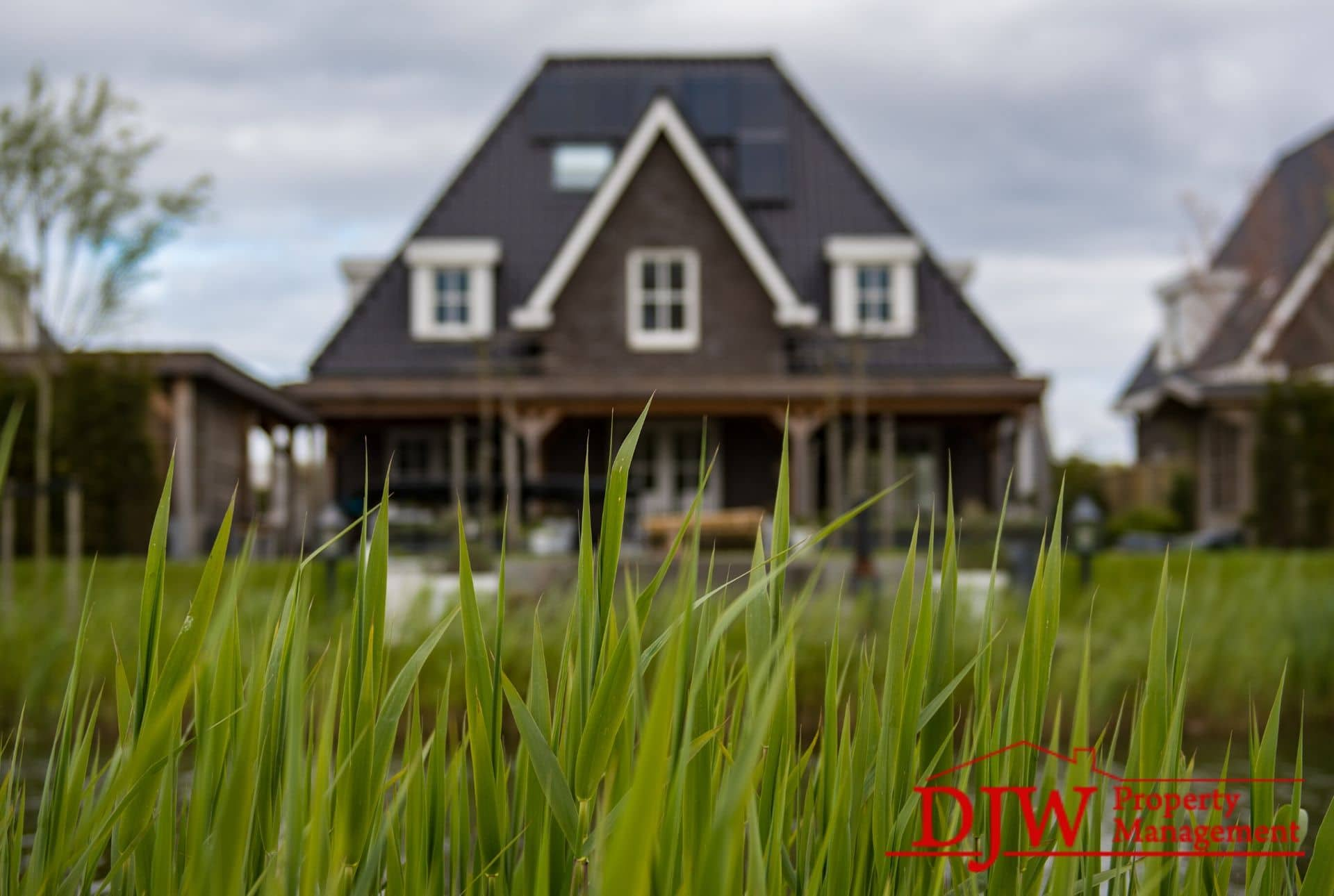 Focus on grass, with a home in the background.
