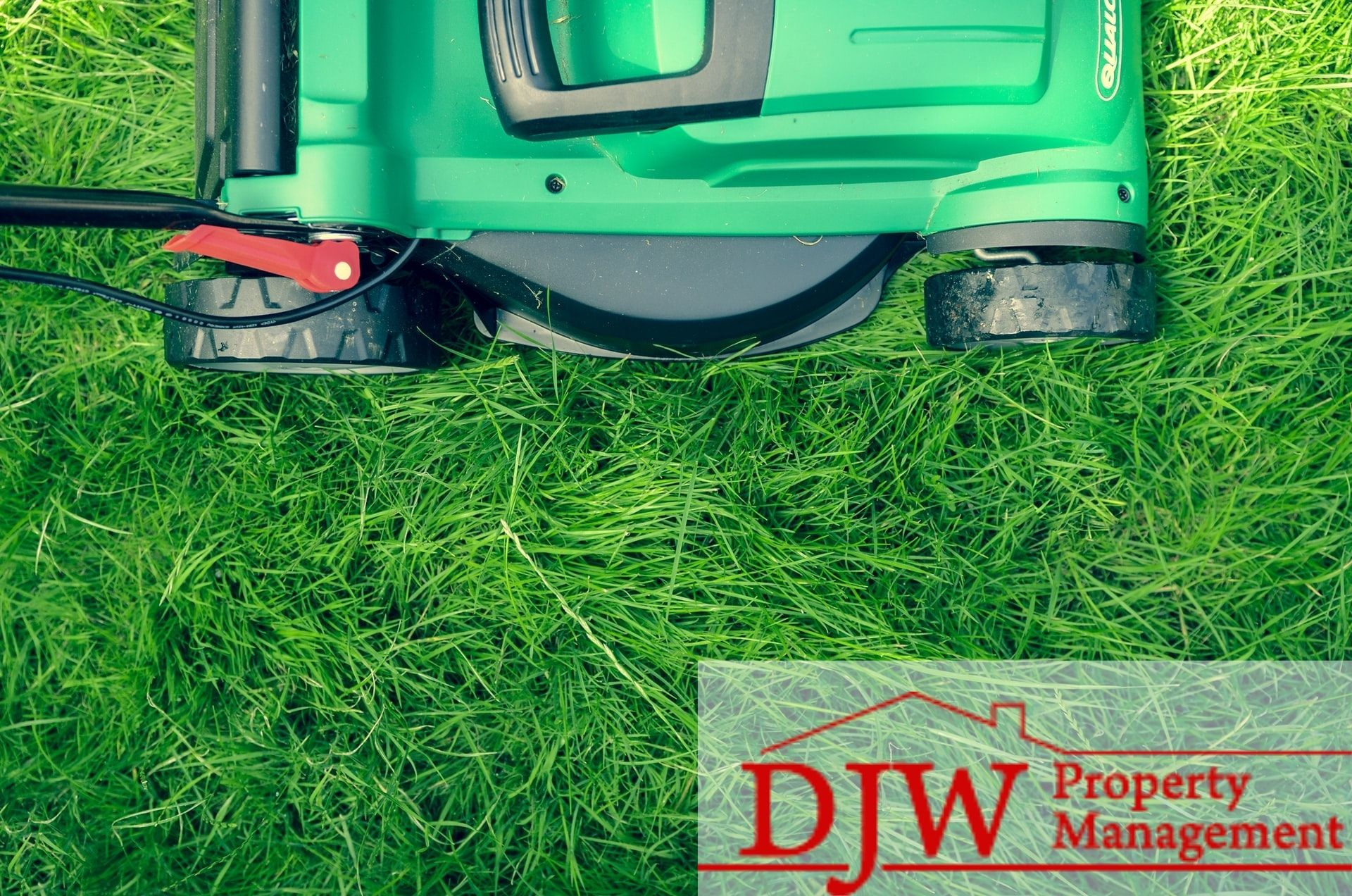 Black and green lawn mower cutting green grass.